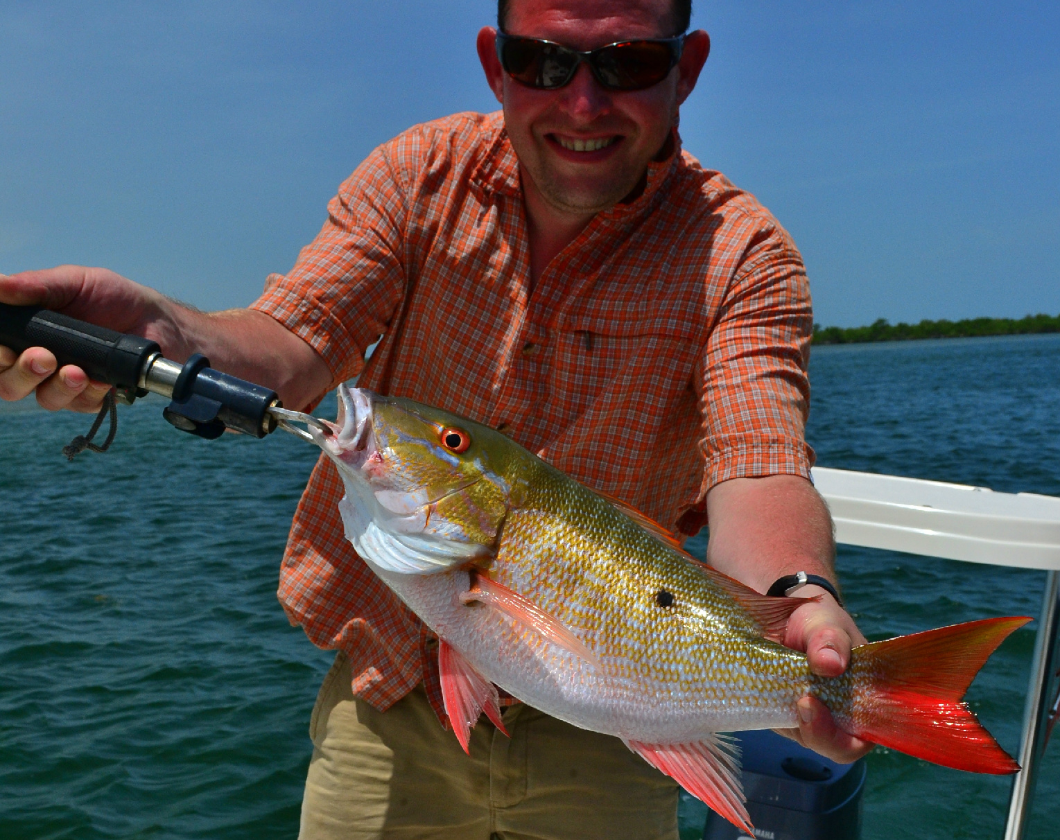 Miami inshore fishing report from mo estevez miami for Biscayne bay fishing