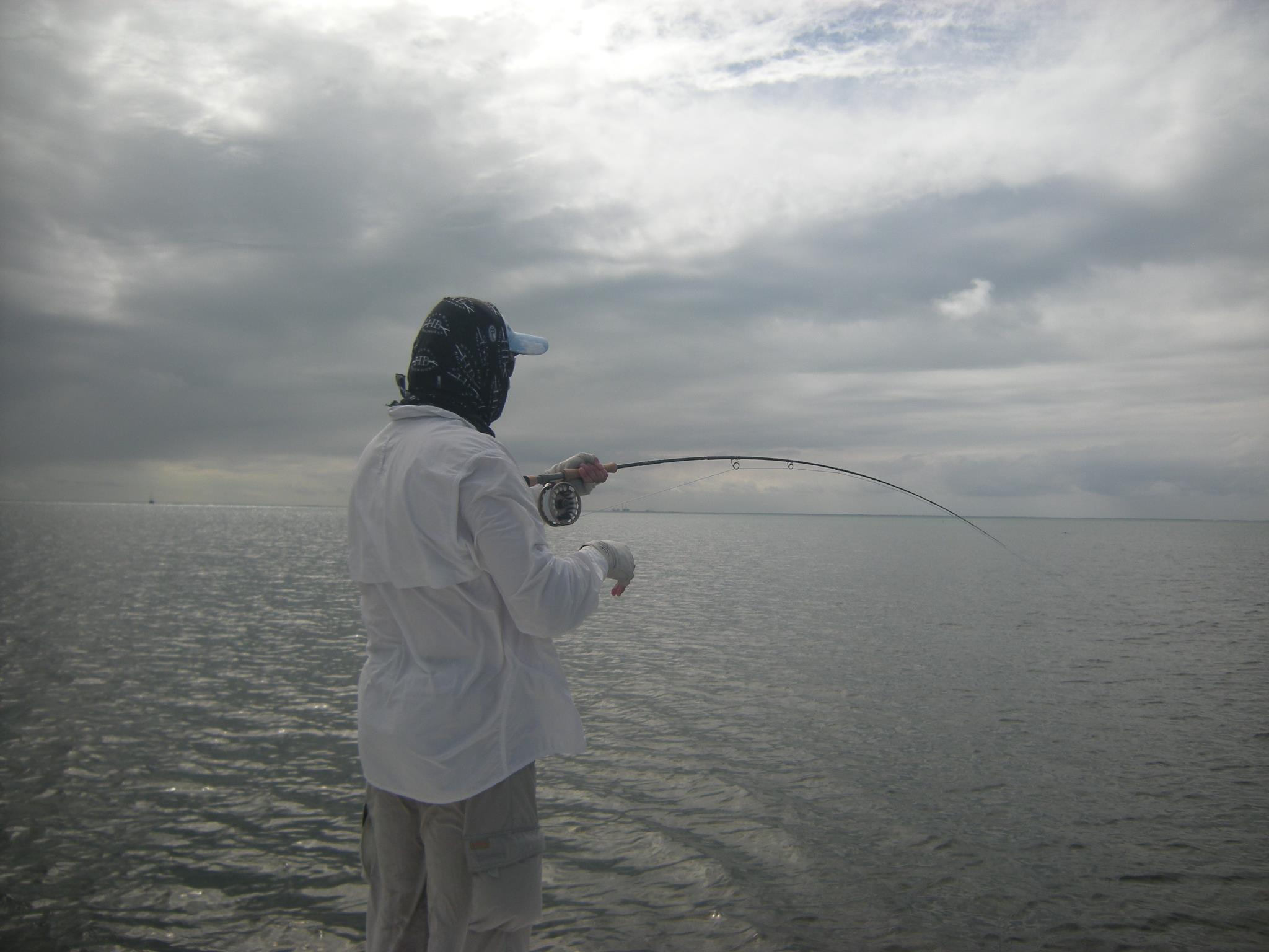 Miami bonefishing on fly miami fishing reports for Fly fishing miami